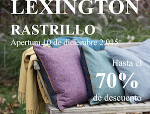 Rastrillo de Lexington Invierno