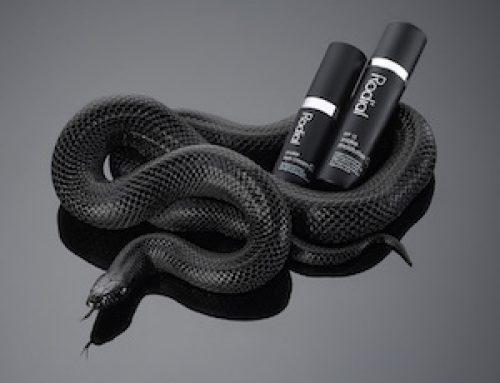 Rodial Snake y otros contornos de ojos