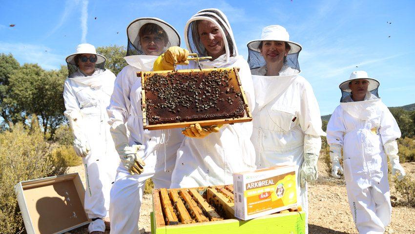 abejas apicultura responsable