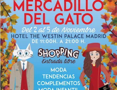 Mercadillo del Gato en Madrid