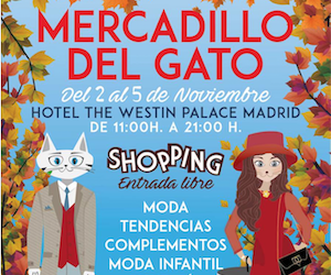 Mercadillo del Gato en Madrid