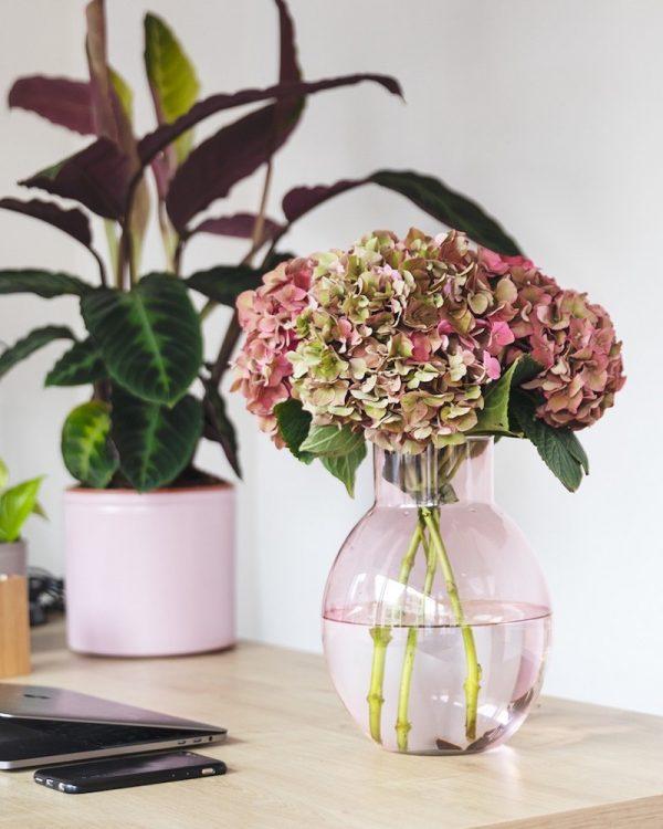 ramo de flores casa